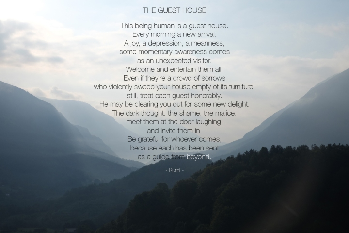 the guesthouse-rumi